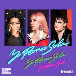 Yo Perreo Sola Remix (Intro Dirty)